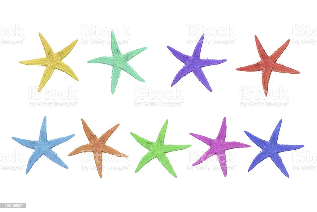 nine colorful starfish on a white background royalty-free stock photo