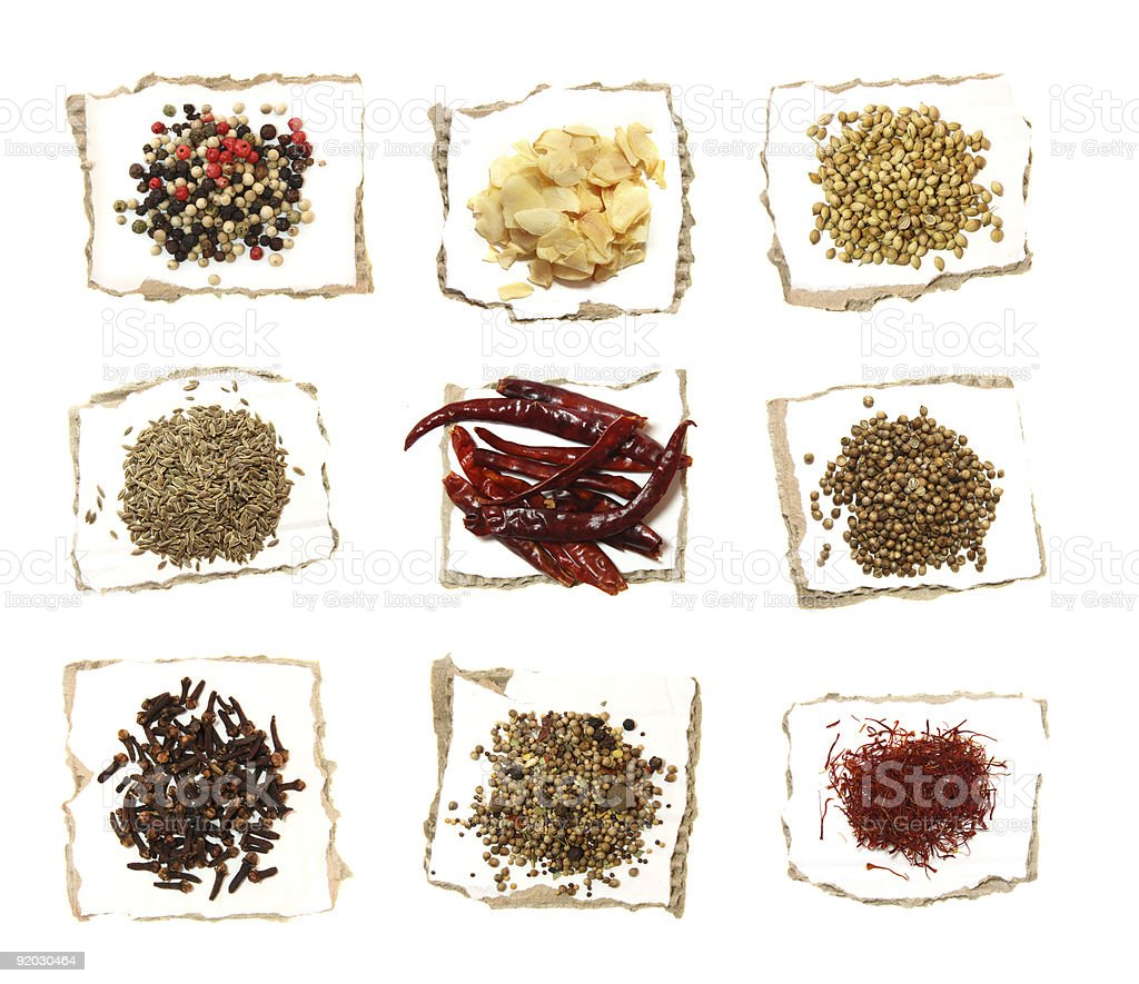 Nine Different Spices on pieces of paper royalty-free stock photo