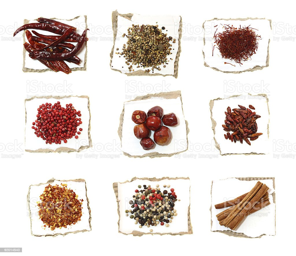 nine Different Spices on pieces of white paper XXLarge size royalty-free stock photo