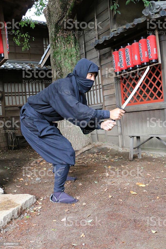 Ninja fighting stock photo