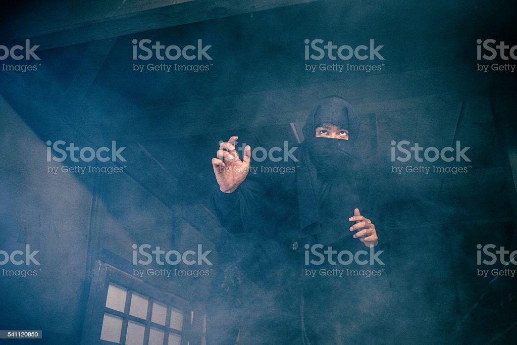 Ninja in the Shadows stock photo