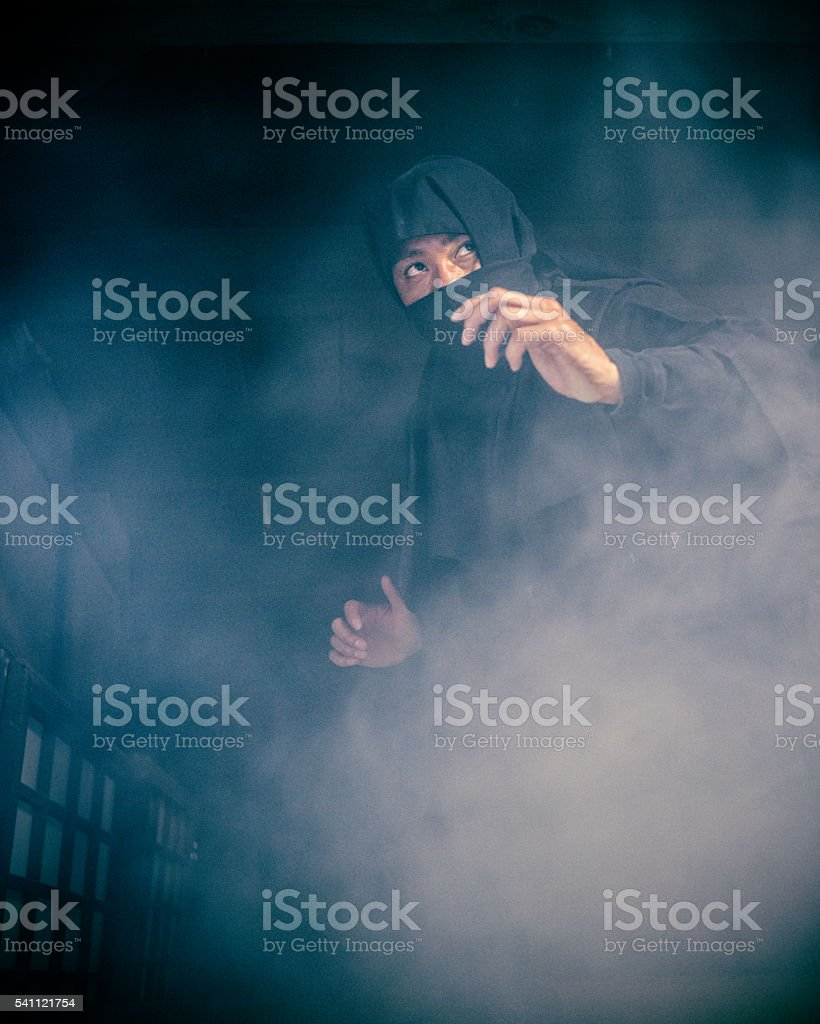 Ninja in the Shadows stock photo