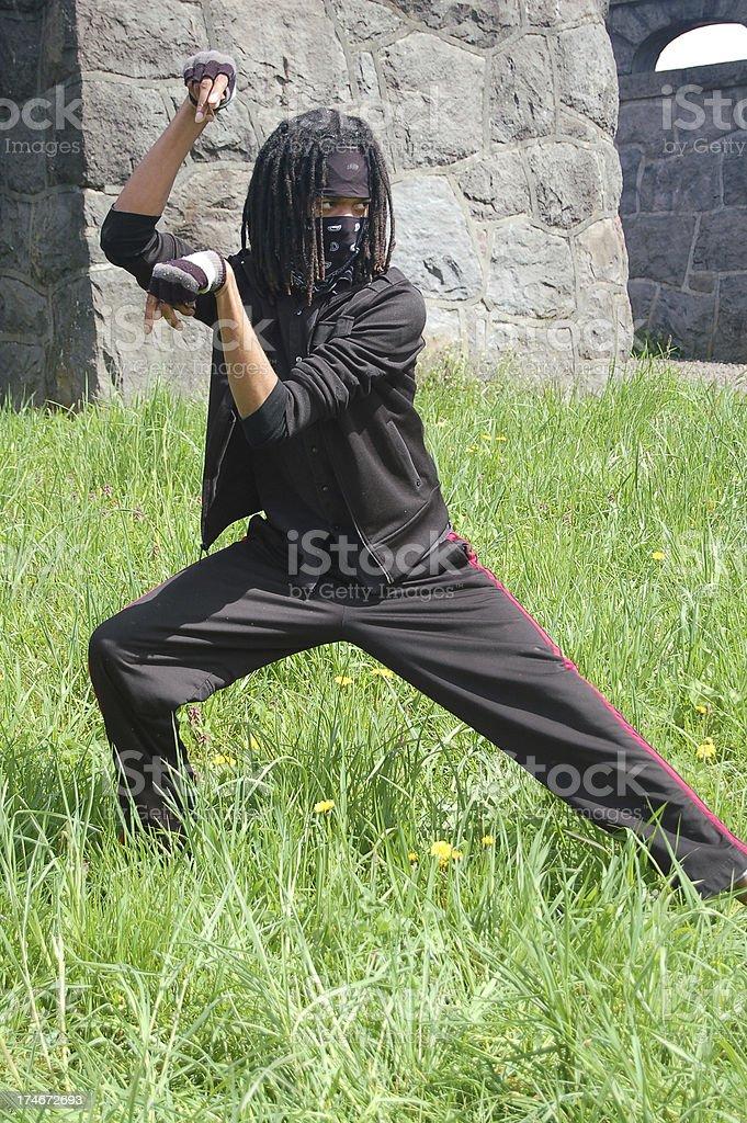 Ninja Moves royalty-free stock photo