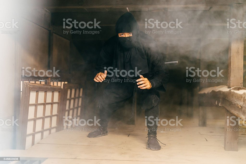 Ninja preparing revenge for Emperor's army stock photo