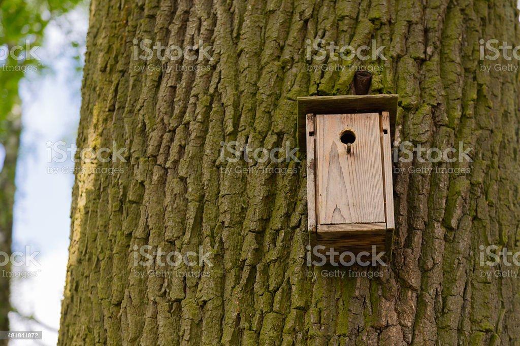 Nistkasten am Baum stock photo