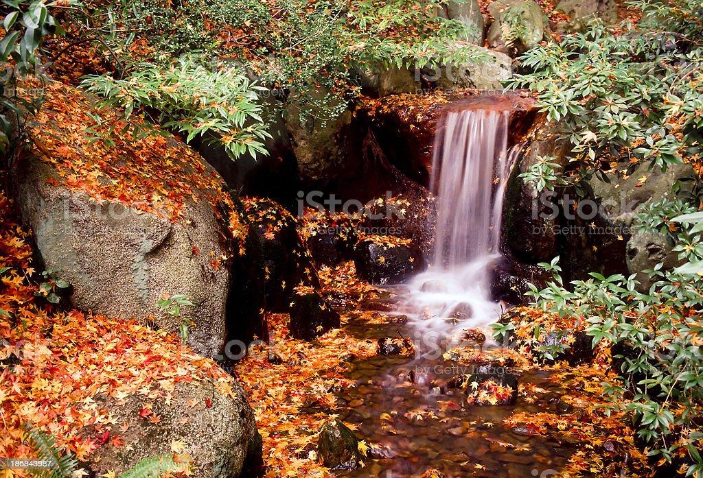 nitobe garden vancouver royalty-free stock photo