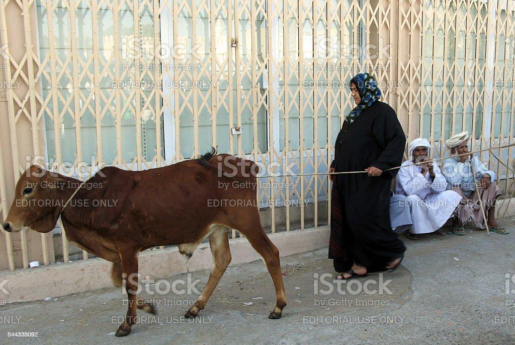 Nizwa Cattle Market - Oman stock photo