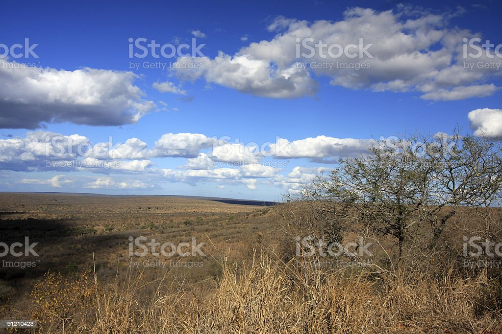 Nkumbe lookout in Kruger Park, South Africa royalty-free stock photo