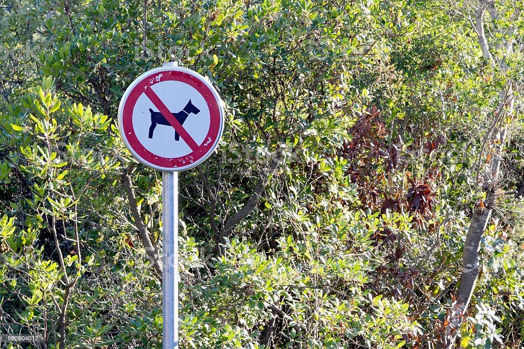 No dog sign stock photo