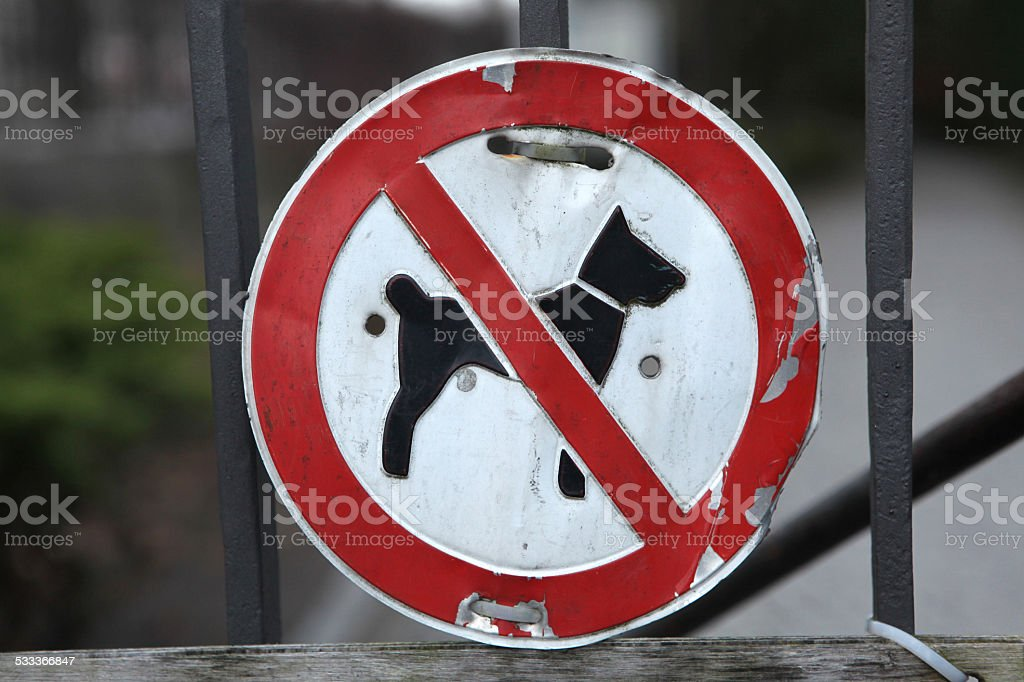 No Dogs Allowed! stock photo