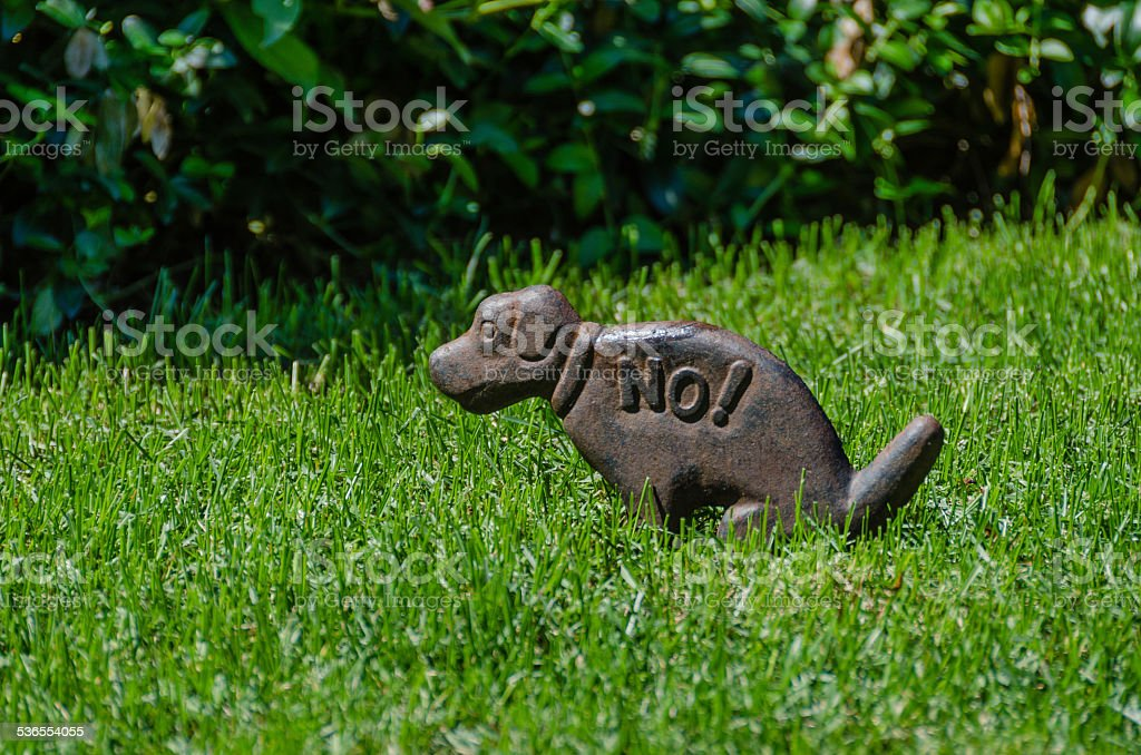 No! Dogs on Lawn stock photo