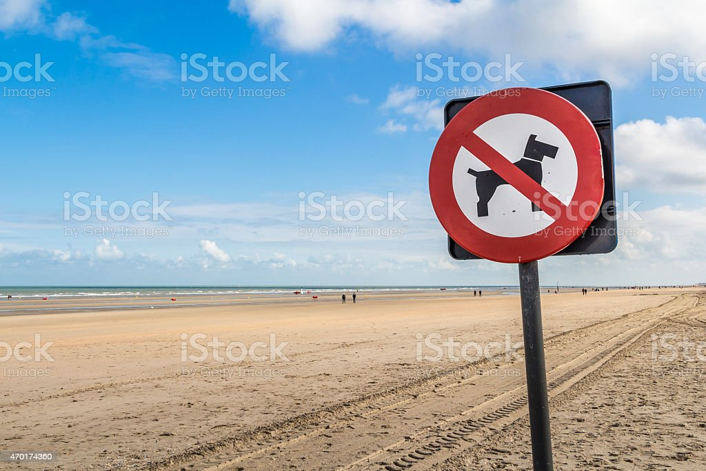 no dogs prohibitory restrictive sign on the beach stock photo