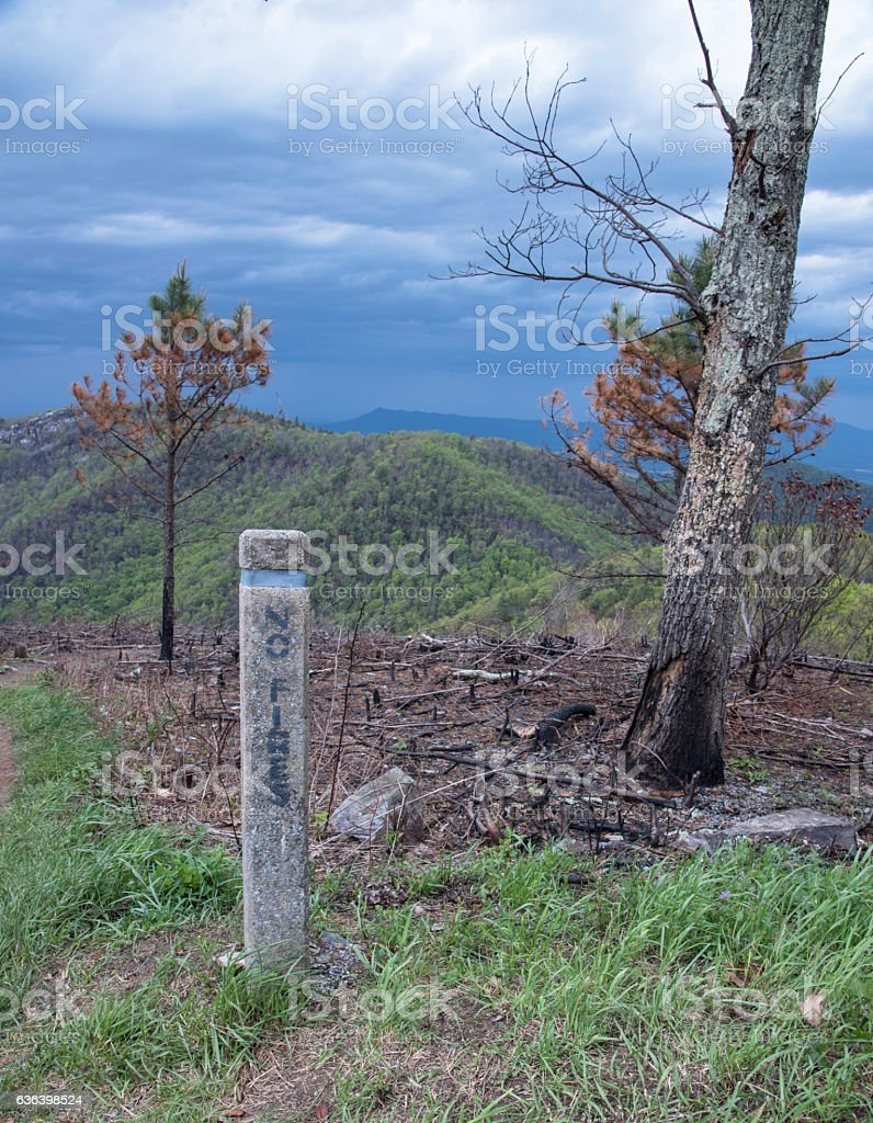 No Fires sign marks the edge of destruction. stock photo