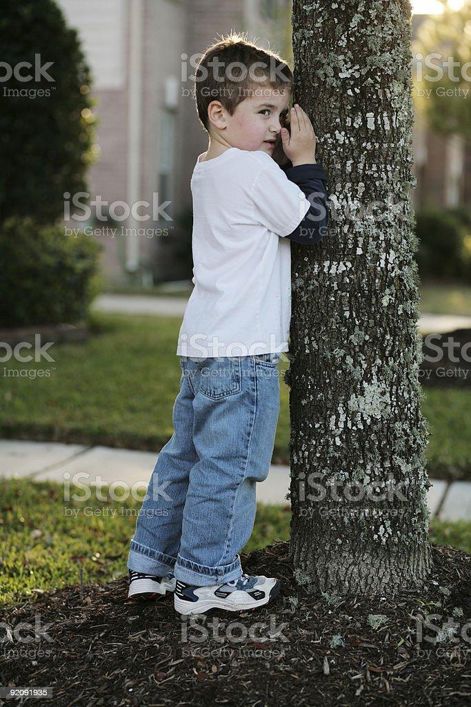 No Peeking! (second of 2) stock photo