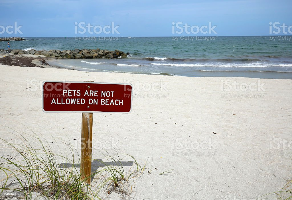 No Pets on Beach sign stock photo