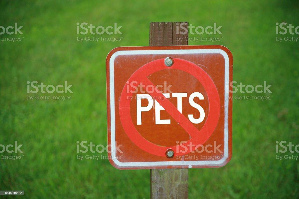 No Pets royalty-free stock photo