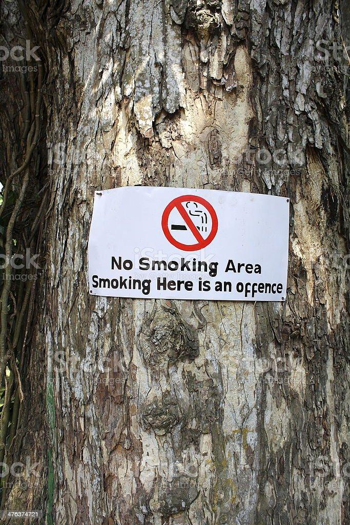 No smoking sign on a tree. royalty-free stock photo