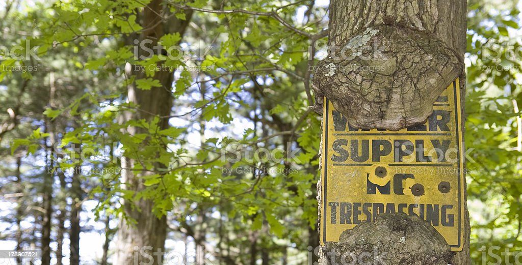 No Trespassing, with Three Bullet Holes royalty-free stock photo
