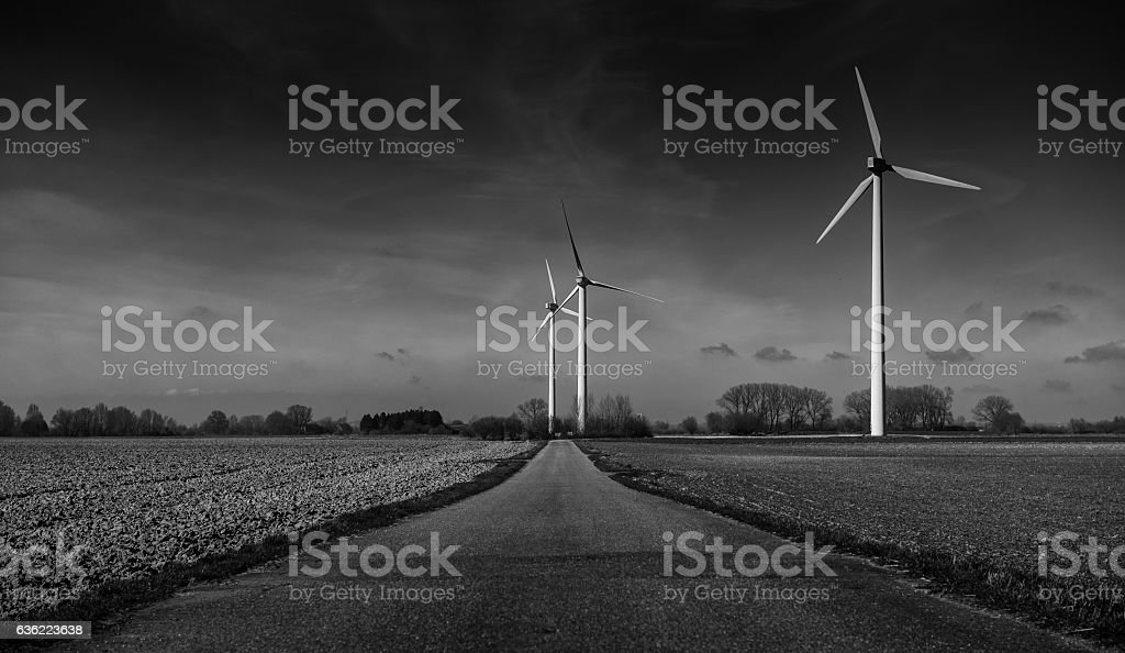 no wind stock photo
