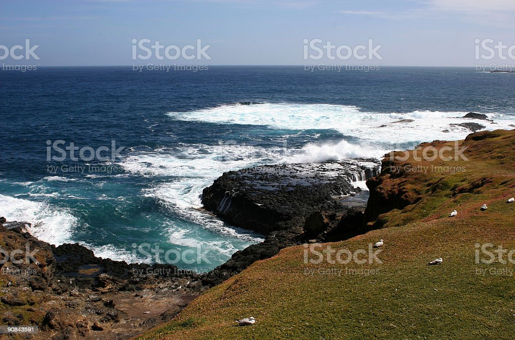 Nobbies and Seal Rocks royalty-free stock photo