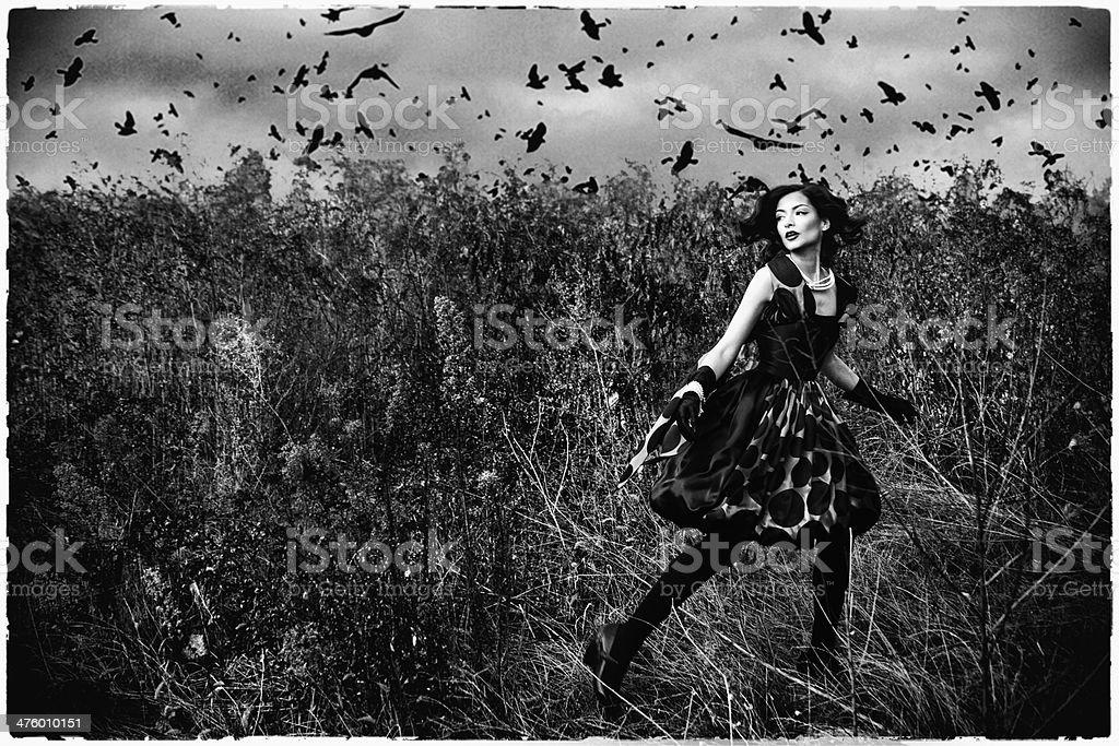 noir desirs stock photo