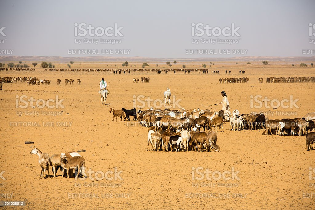 Nomads at a deep  fountain  Sudan stock photo