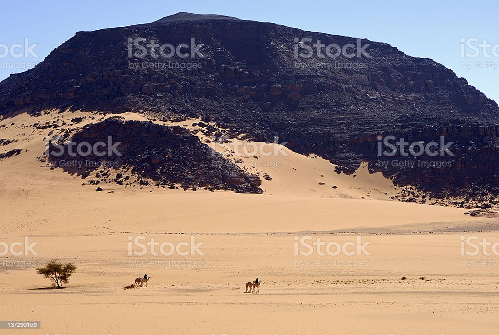 Nomads on their camels in the desert stock photo