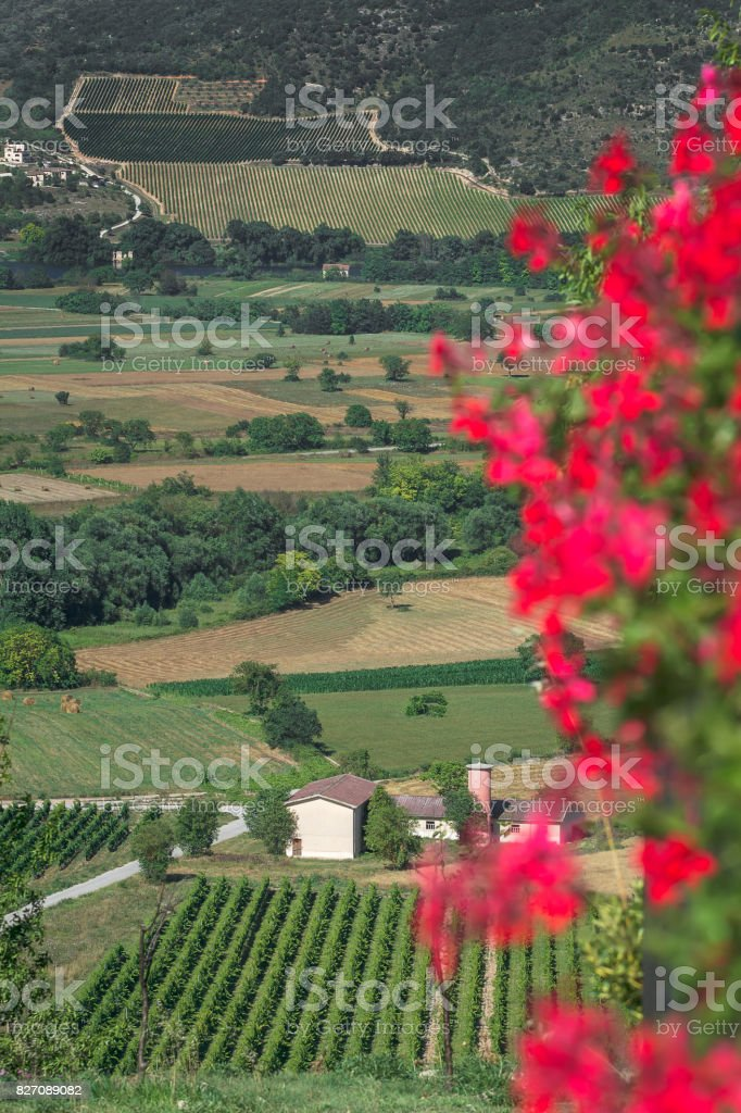 Non-urban green valley landscape with mountains in Italian Abruzzo stock photo