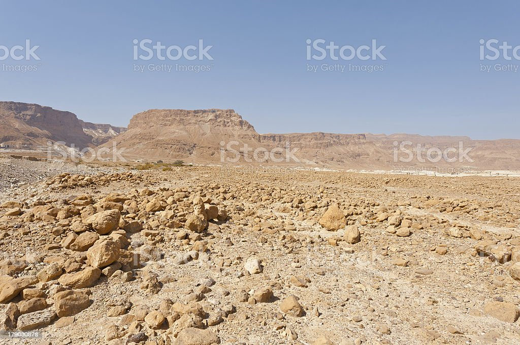Noon in Desert royalty-free stock photo