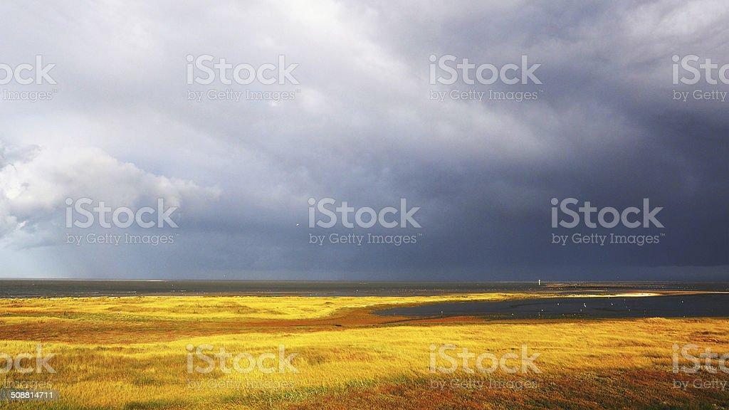 Noordkaap, Texel stock photo