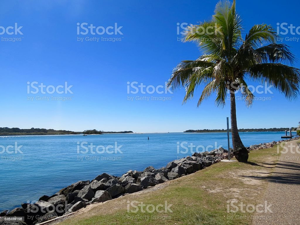 Noosa Heads, Palm Tree, Noosa River Australia stock photo