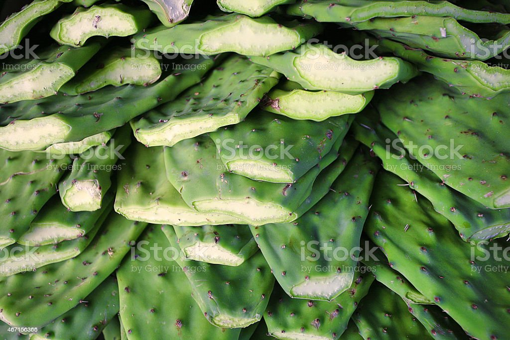 Nopales / Cactus paddles in market stock photo