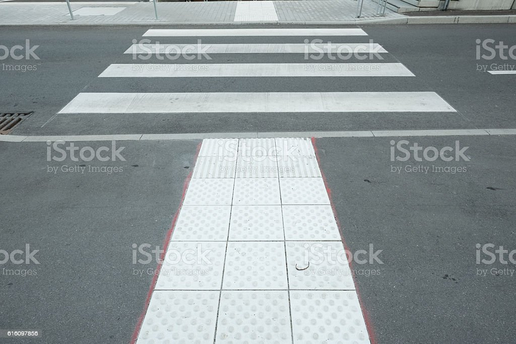 Nopps at attention field at a zebra crossing stock photo