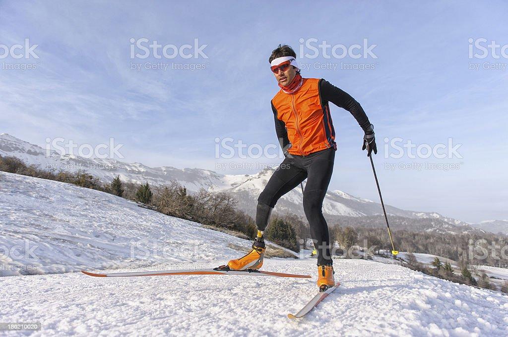 Nordic skiing royalty-free stock photo
