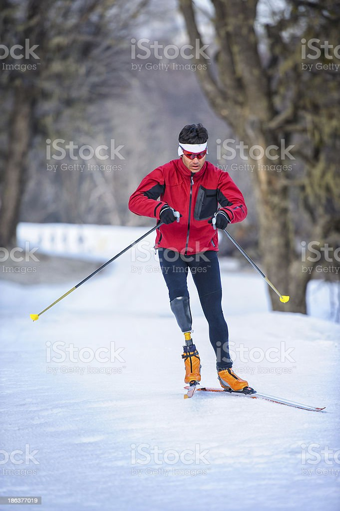 nordic skiing stock photo
