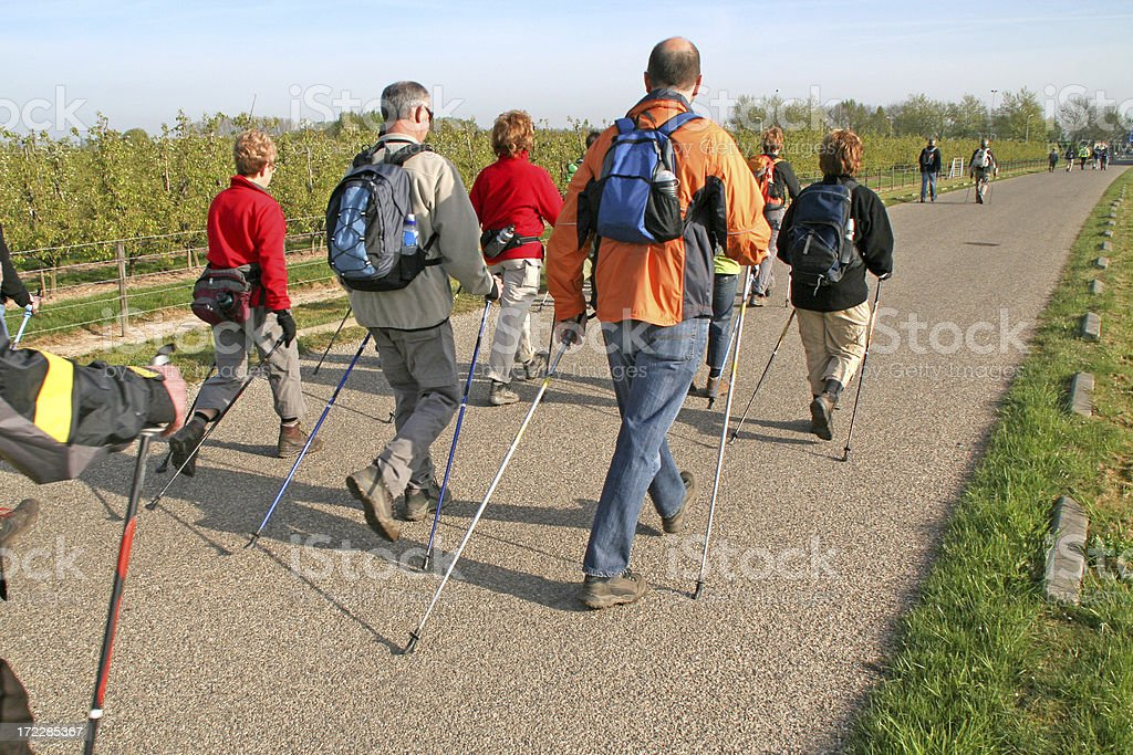 Nordic walking  # 9 stock photo