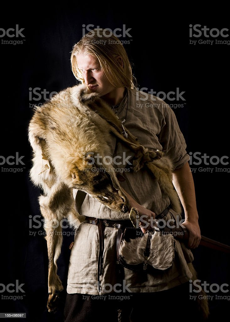 Nordic Warrior stock photo