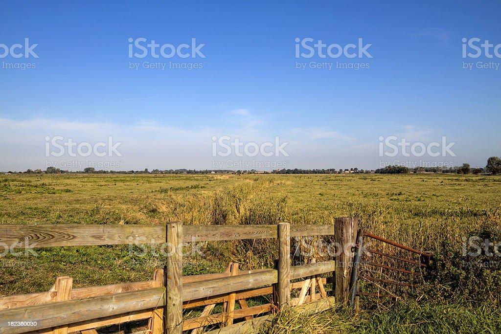 Norfolk marshlands stock photo