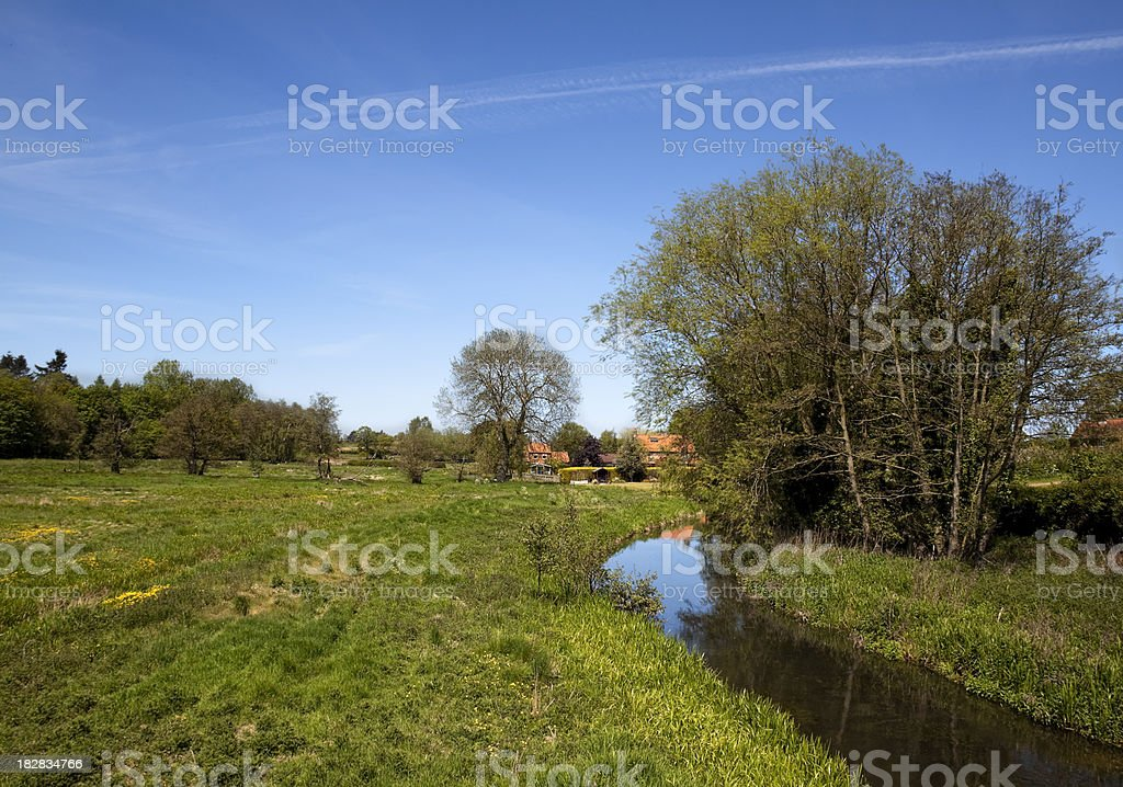 Norfolk stream and spring meadow stock photo