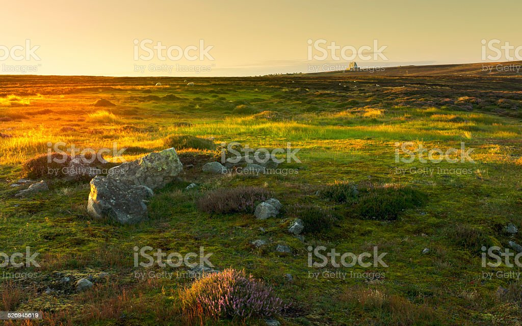 Nork York Moors at dawn, Goathland, Yorkshire, UK. stock photo