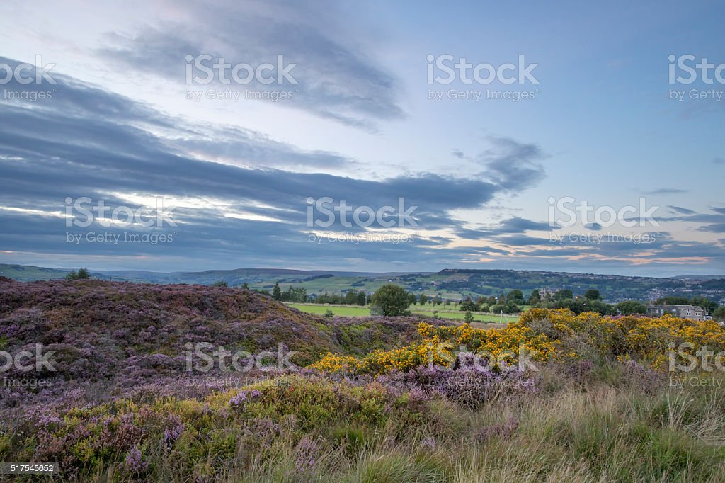 Norland View stock photo