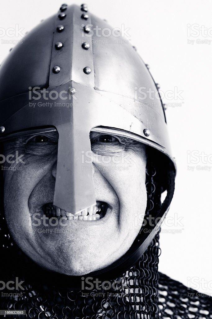 Norman Warrior stock photo