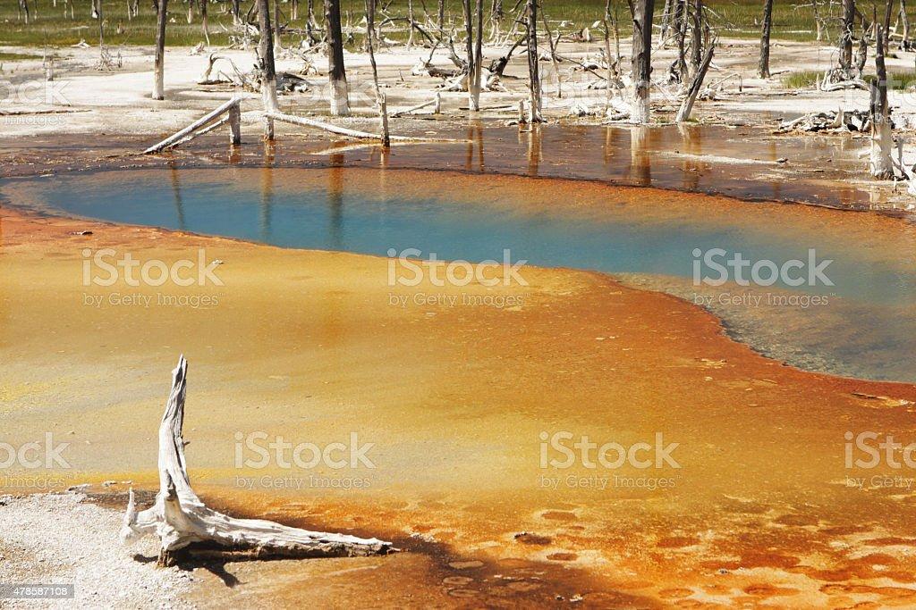 Norris Geyser Basin Thermal Spring stock photo