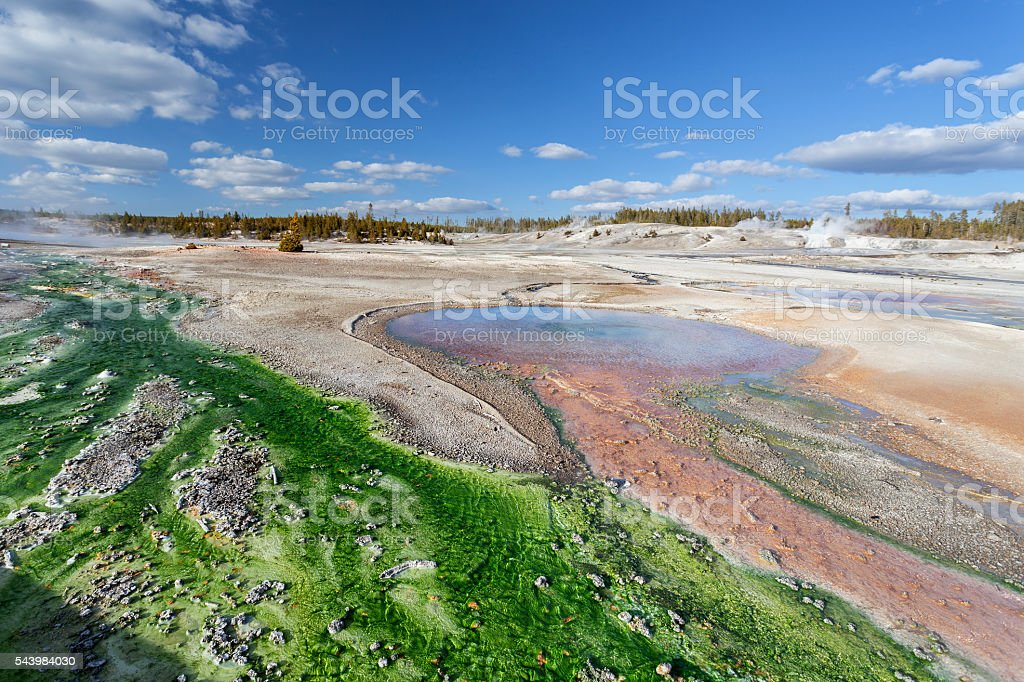 Norris Geyser Basin Yellowstone National Park stock photo