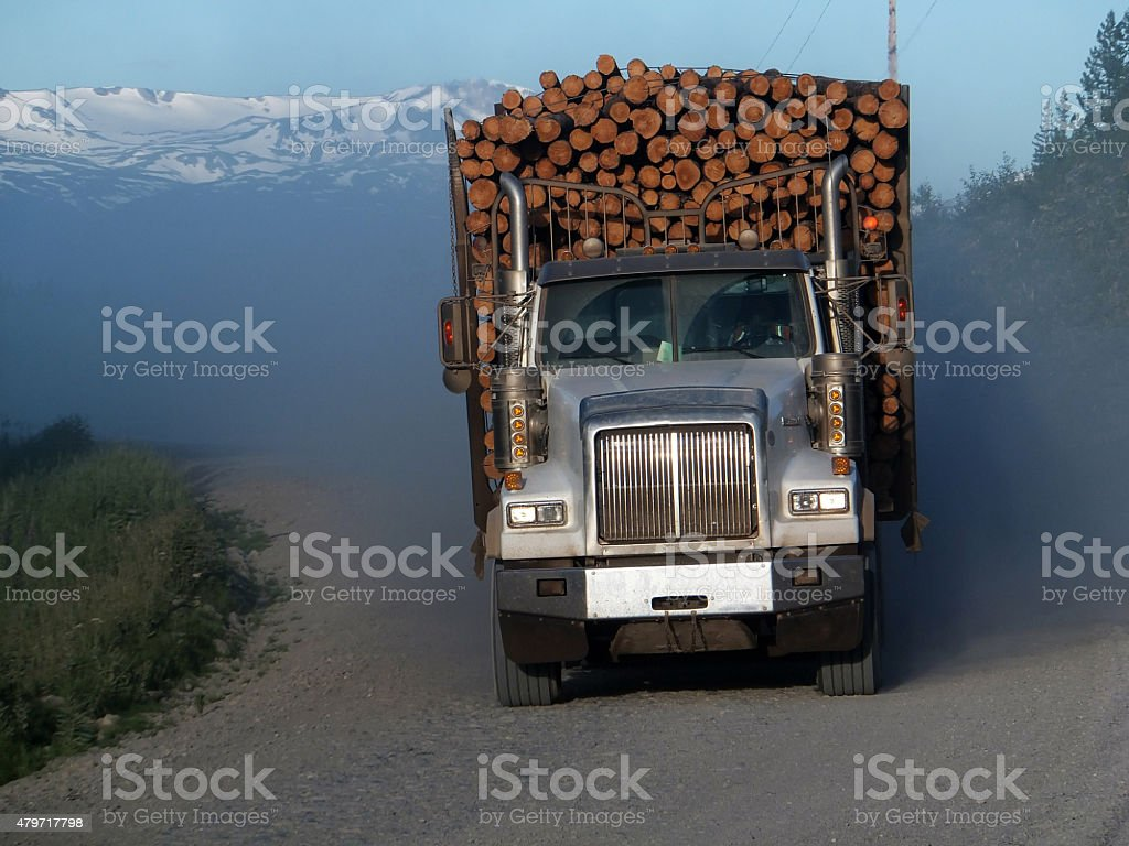 North American Foresty Industry stock photo