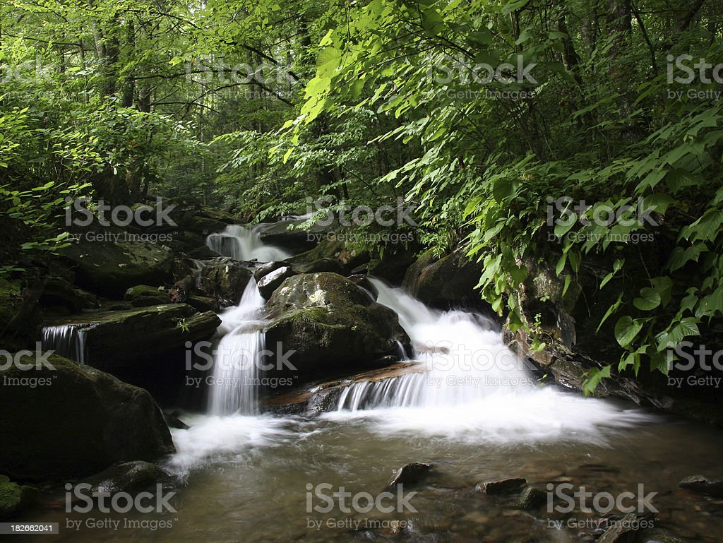 North Carolina Creek royalty-free stock photo