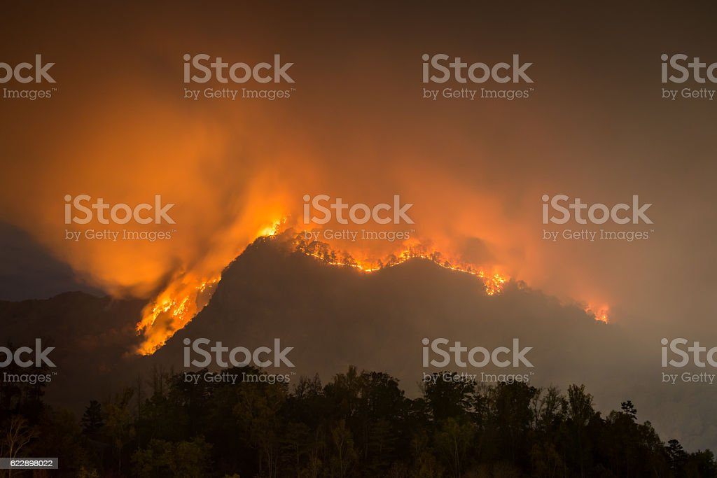 North Carolina Forest Fire stock photo