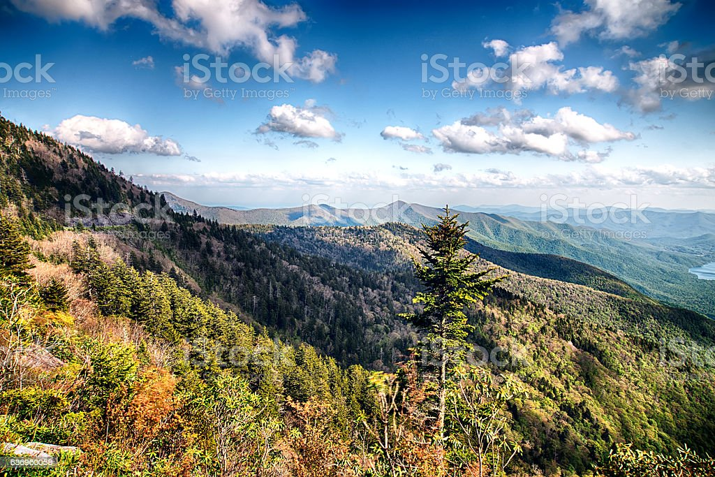 North Carolina Great Smoky Mountain Scenic Landscape stock photo