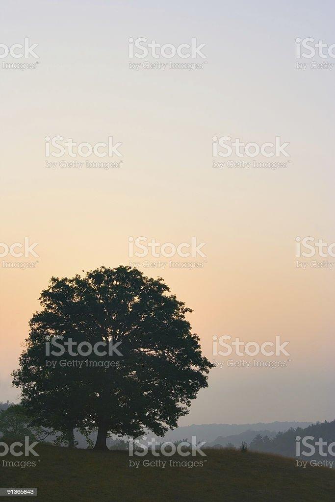 North Carolina Mountain Dawn royalty-free stock photo