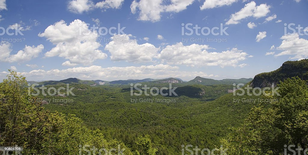 North Carolina Mountains and Forest Panorama royalty-free stock photo
